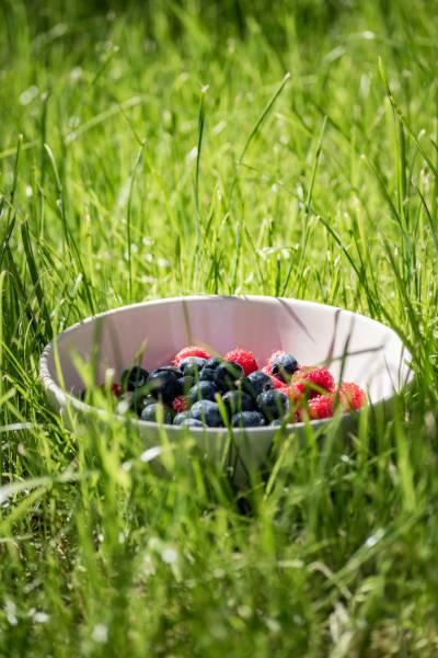 Potraviny pre zdravé a husté vlasy
